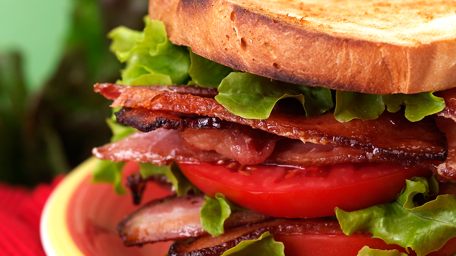 blt carbon footprint