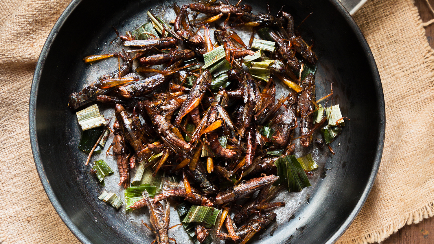What Would it Take For You to Eat Insects?