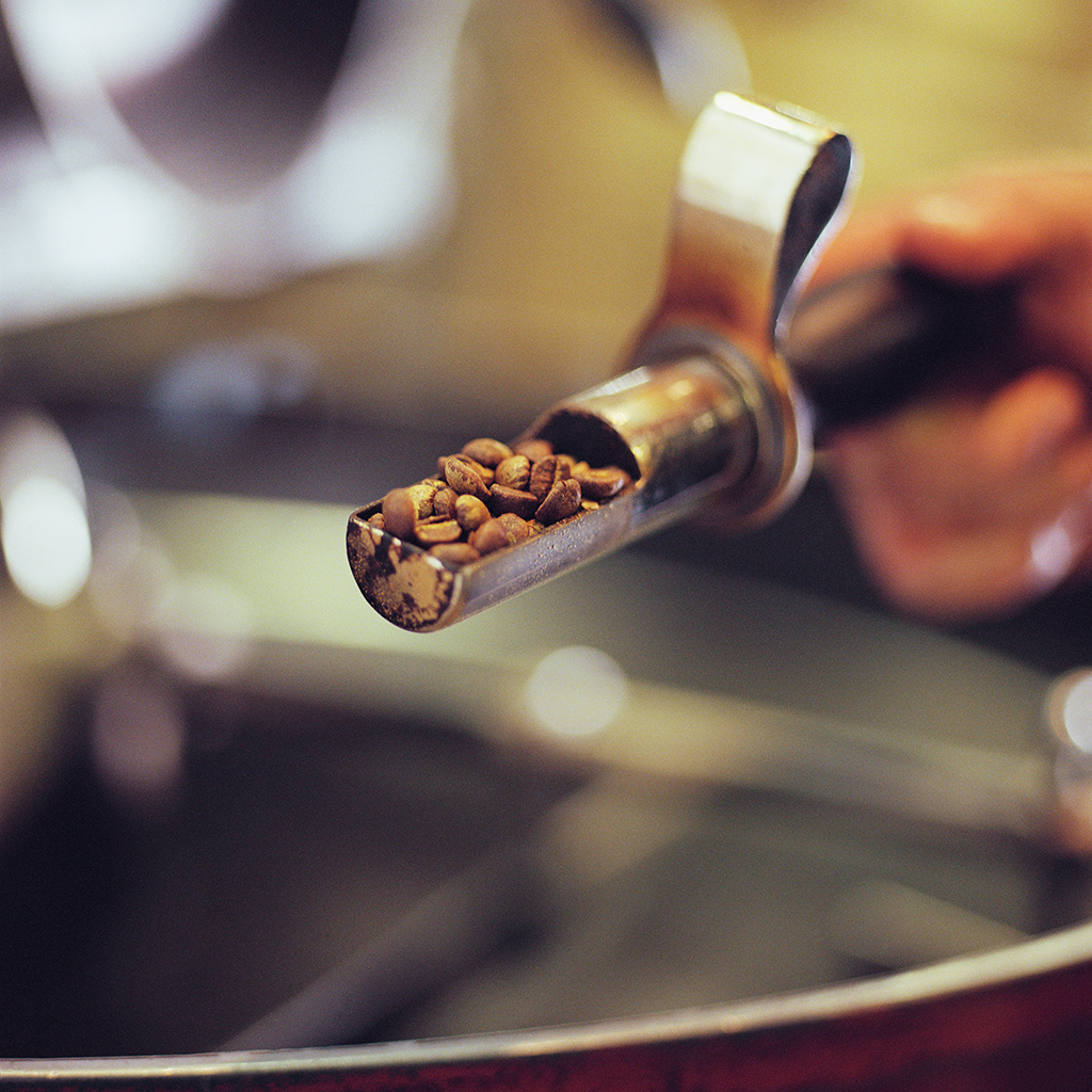 Would You Put Your Life On The Line To Drink The World's Most Caffeinated Coffee?