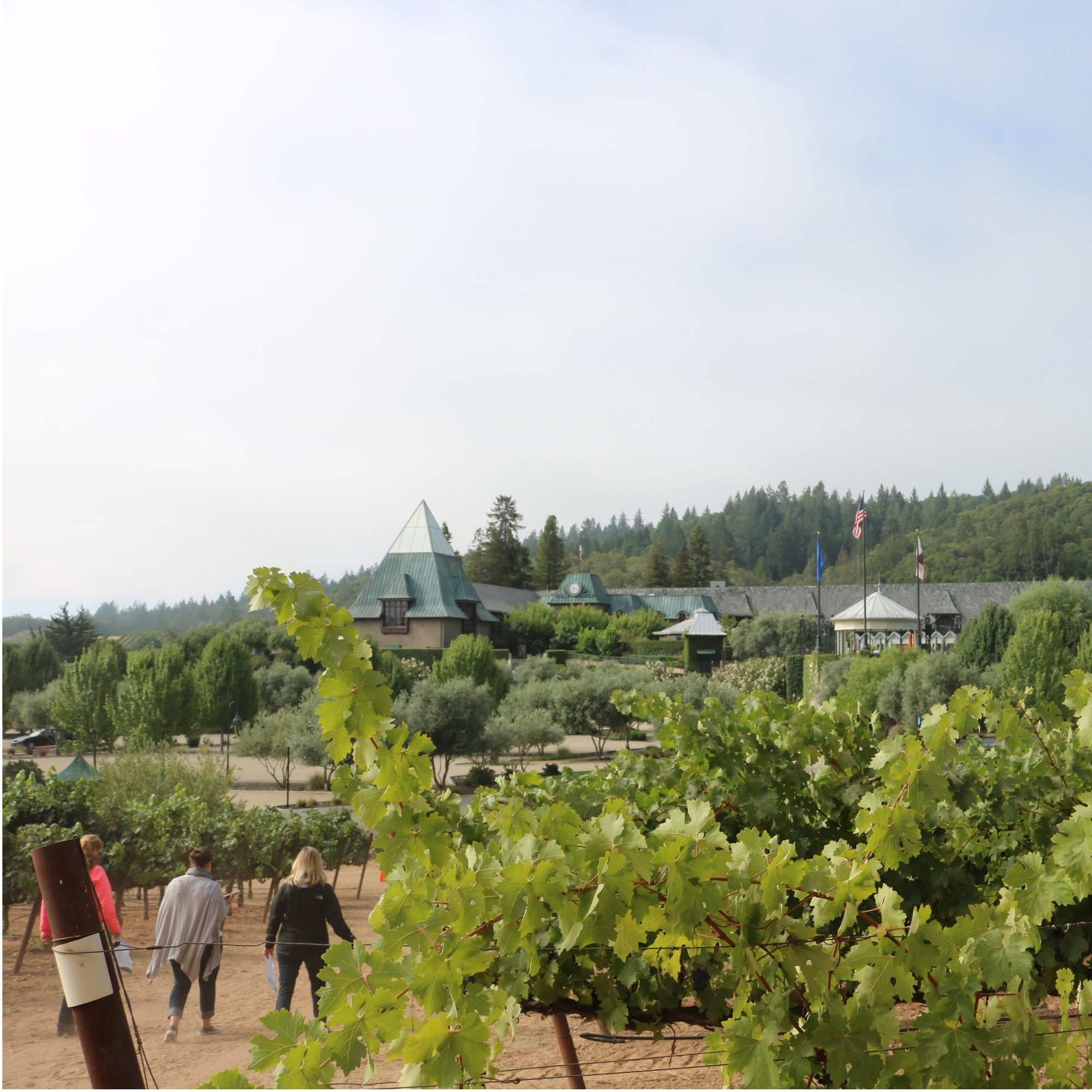 What It's Like To Glamp at the Francis Ford Coppola Winery