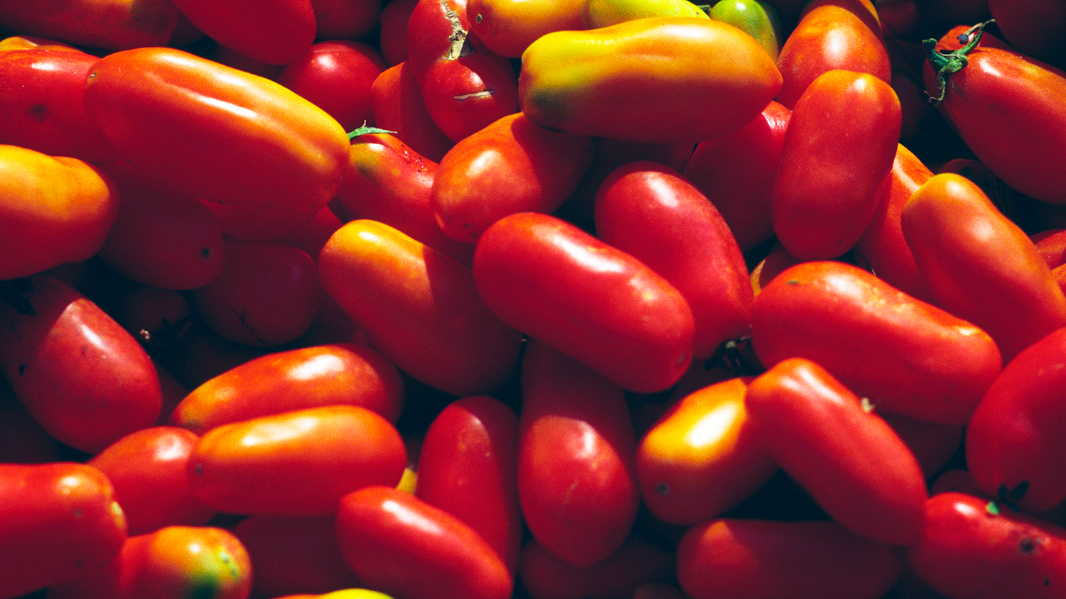Apparently Most Canned San Marzano Tomatoes Are Fake Food Amp Wine