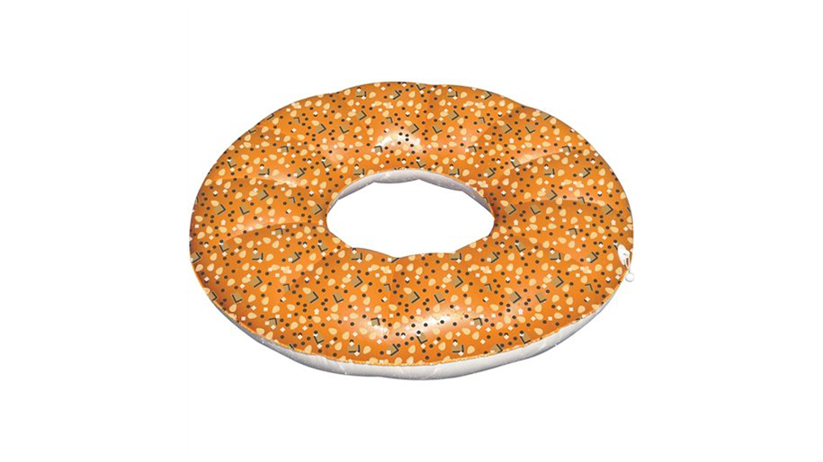 Everything Bagel Pool Float