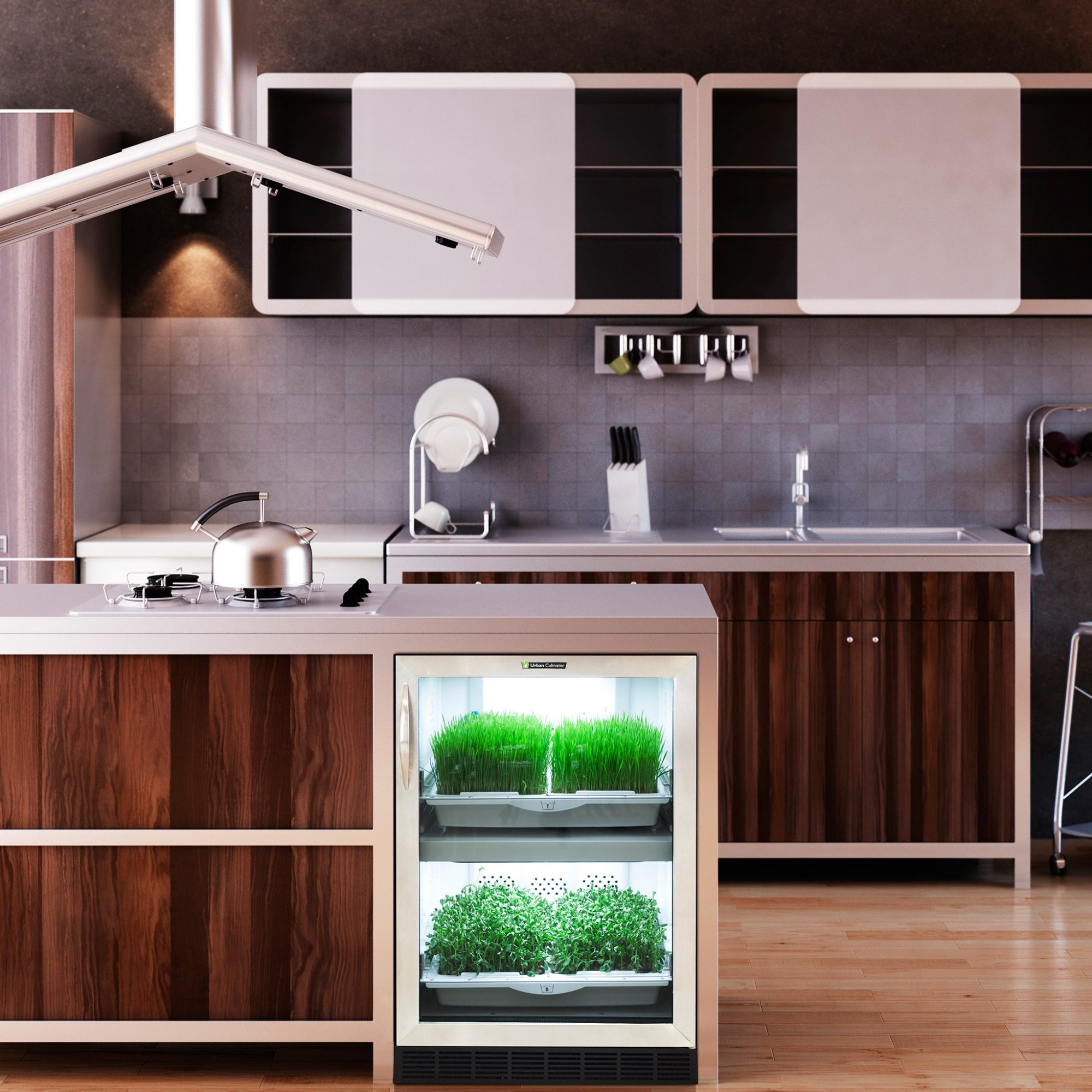 FWX A TINY GREENHOUSE THAT FITS IN YOUR KITCHEN URBAN CULTIVATOR EXAMPLE
