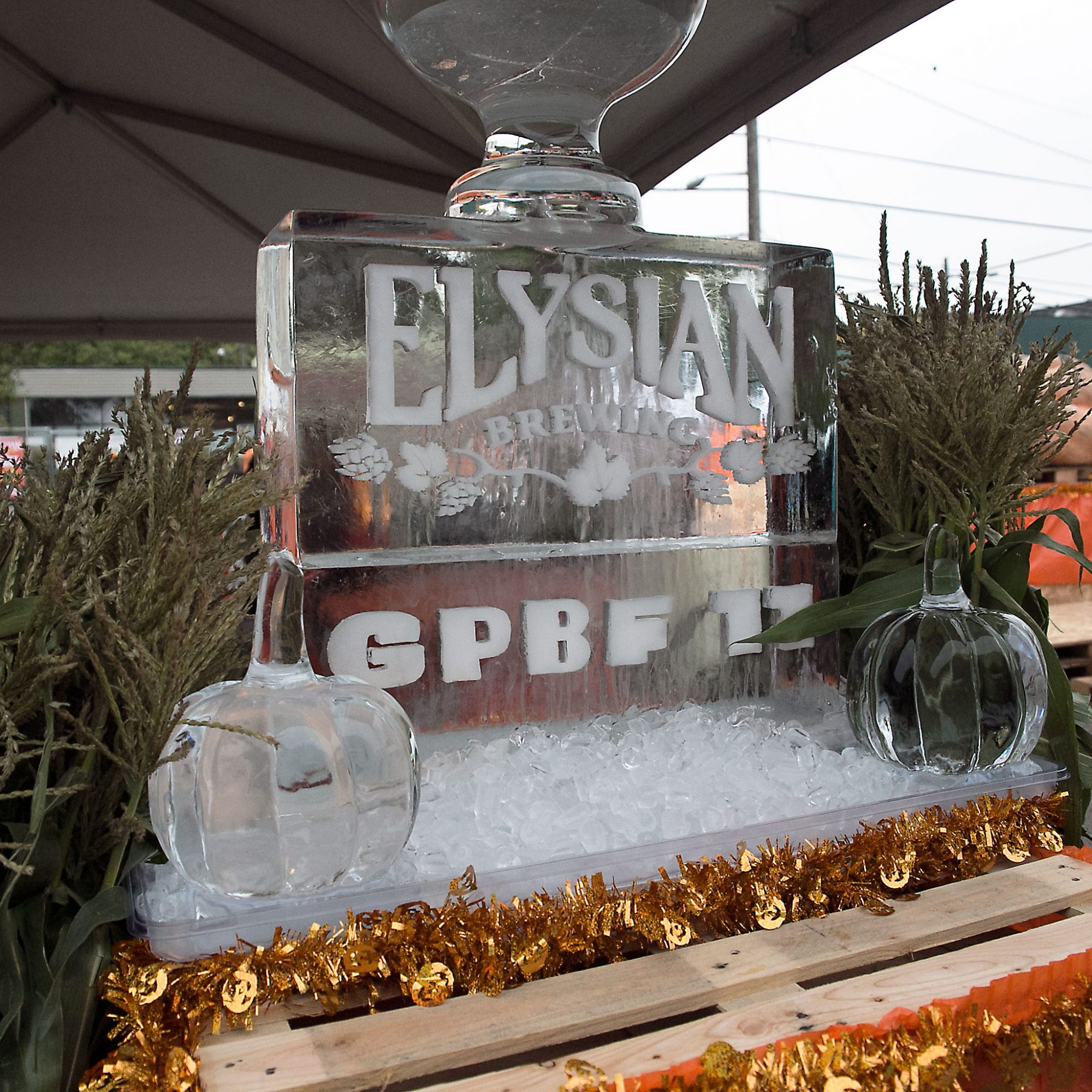 A Day at the World's Best Pumpkin Beer Fest