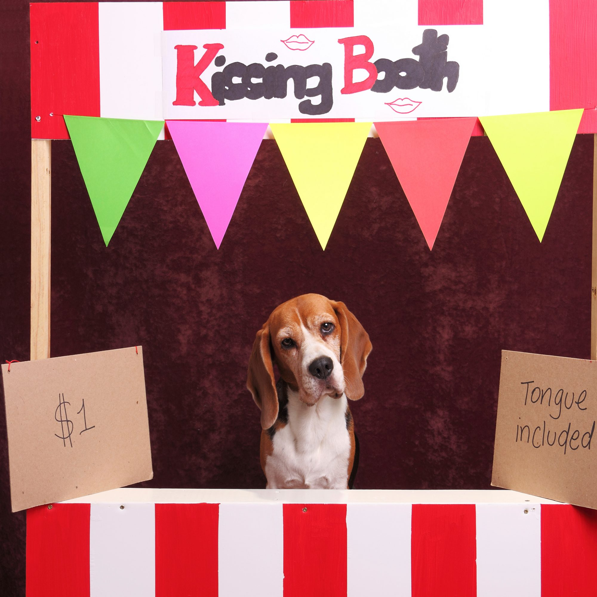 FWX BURRITO KISSING BOOTH