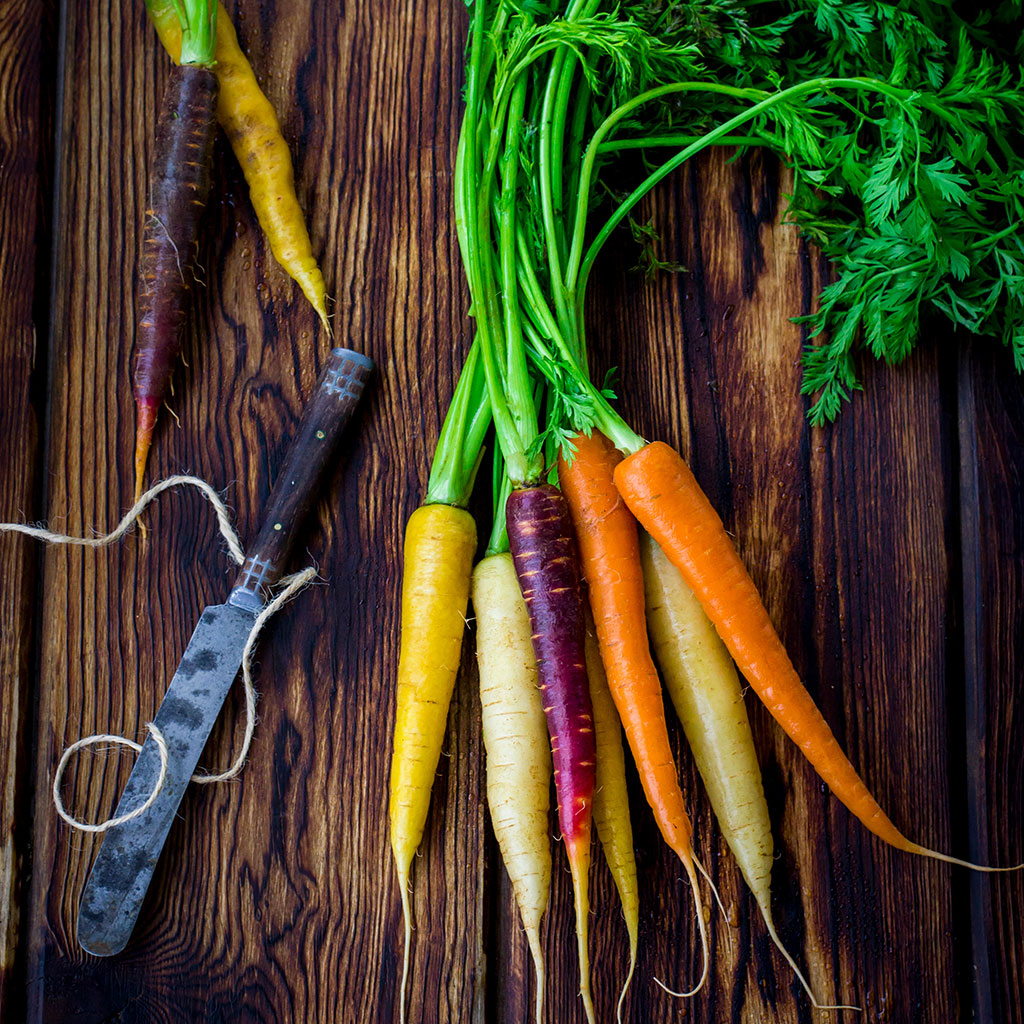 FWX CARROT OIL