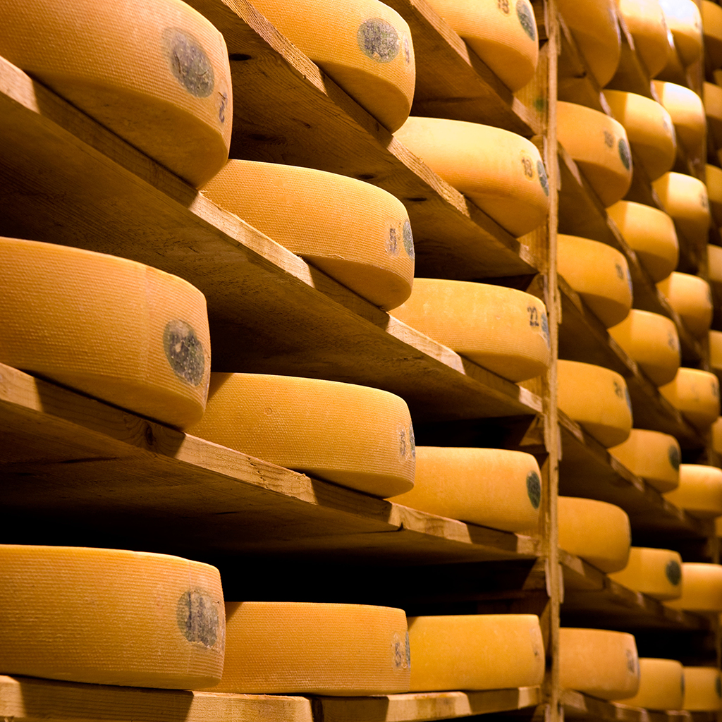 Russia Is Importing French Cheese Knowledge in Lieu of Actual Cheese