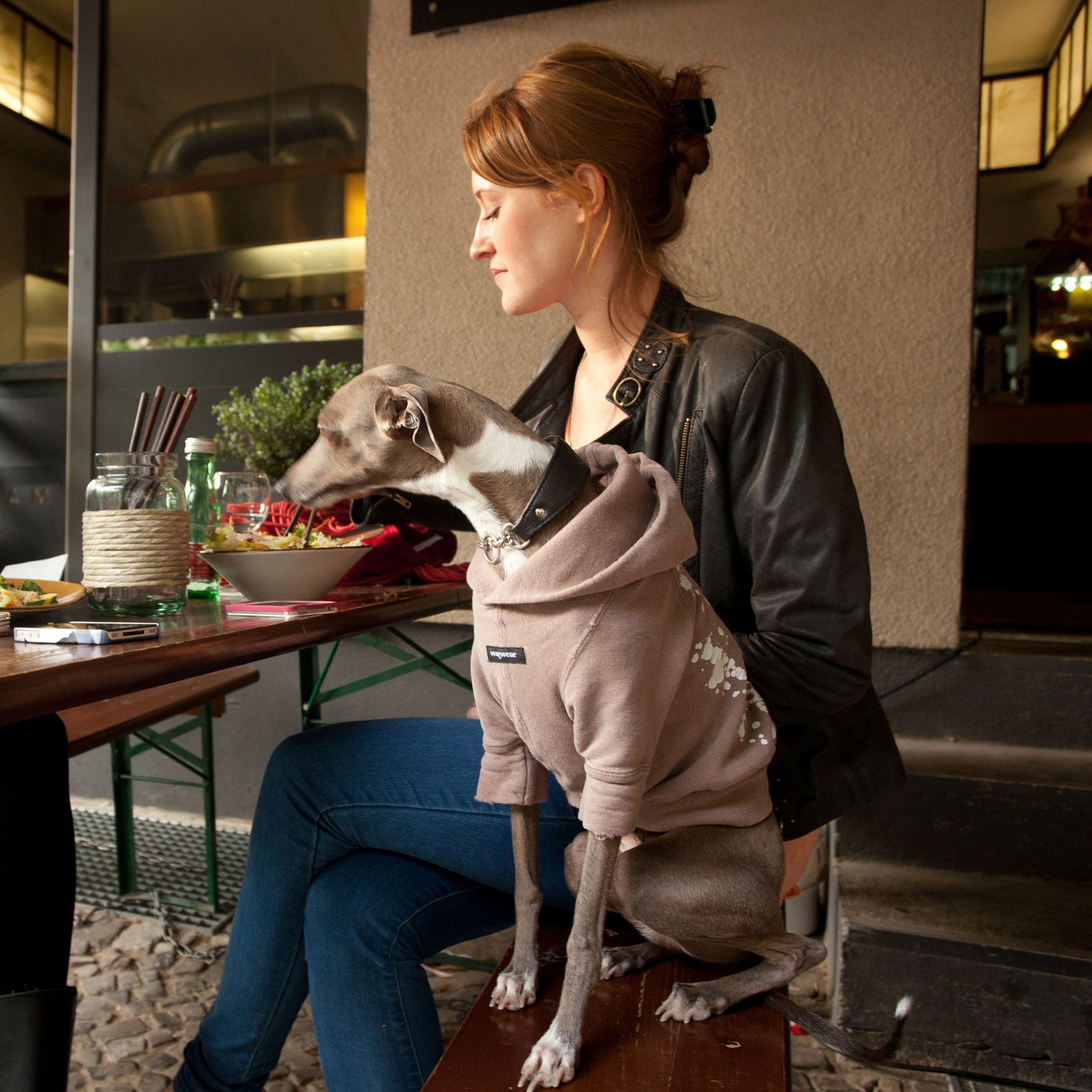 NYC Wants to Beat LA in Race to Open America's First Dog Café