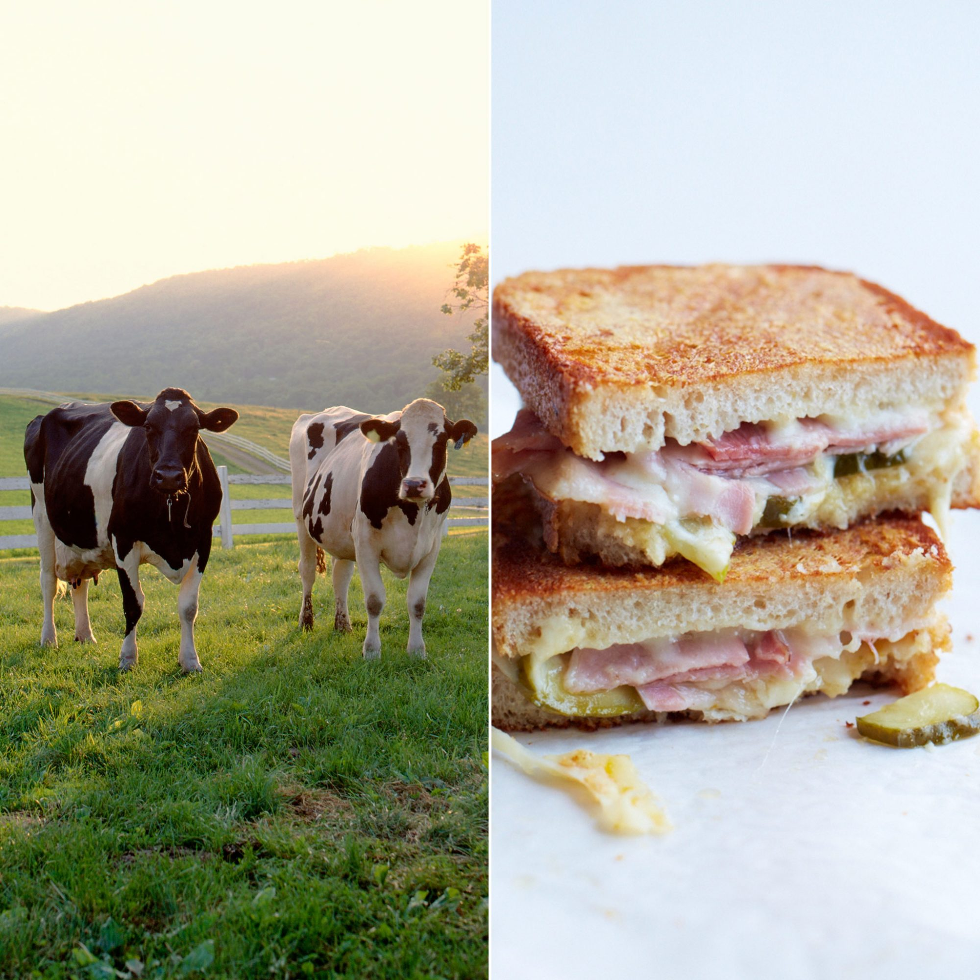 This Ham-and-Cheese Sandwich is the Ultimate Farm-to-Table Experience