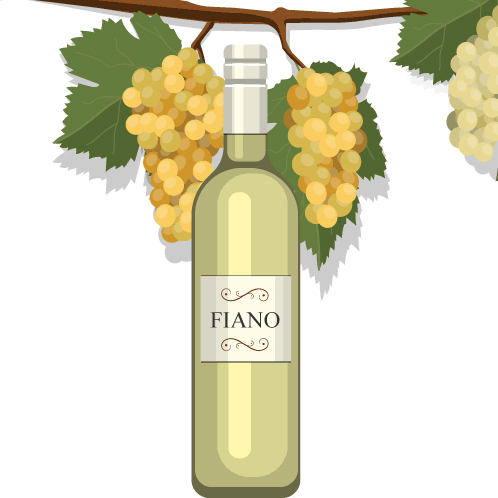 What You Need To Know About Italian White Wines