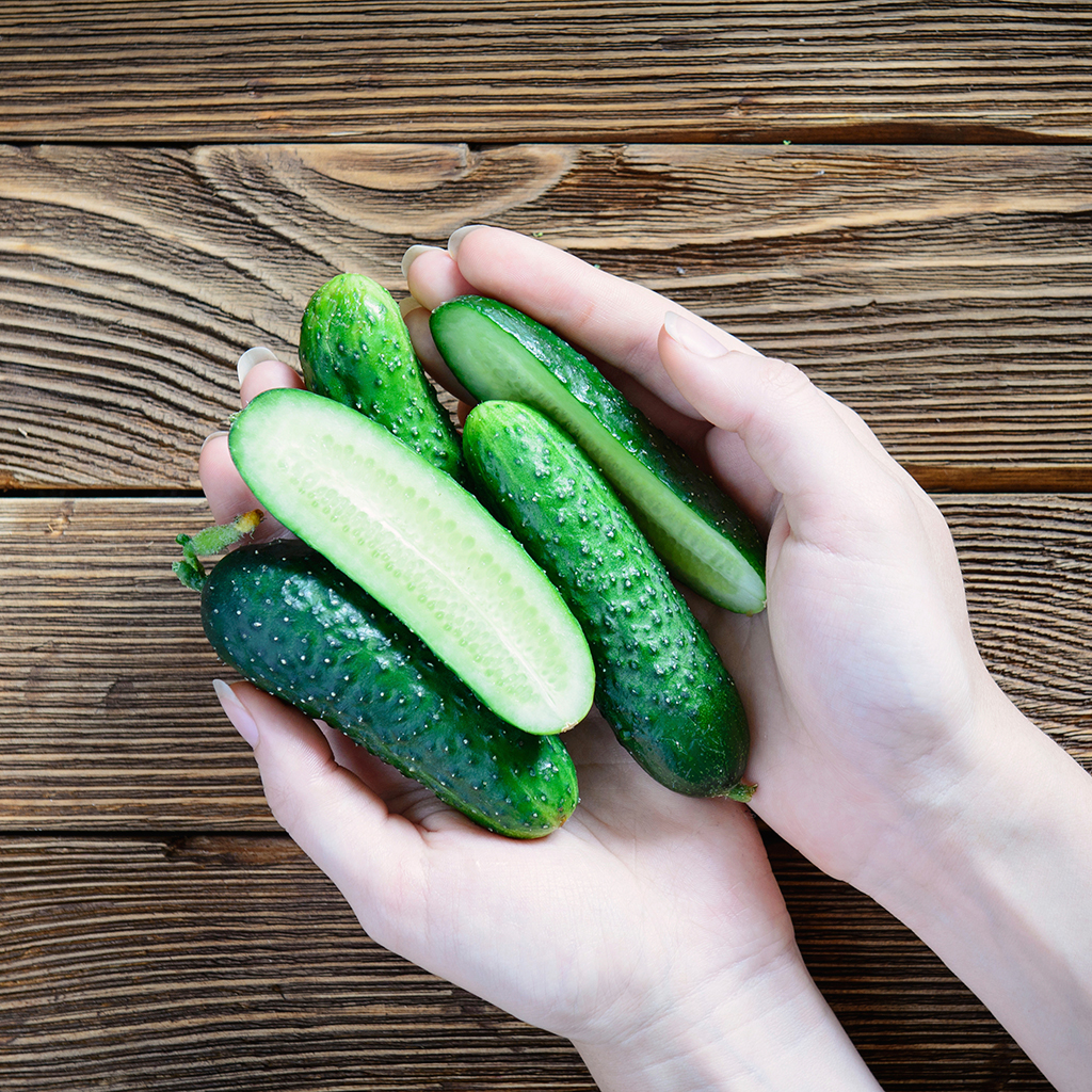 FWX FOOD IDIOMS CUCUMBERS