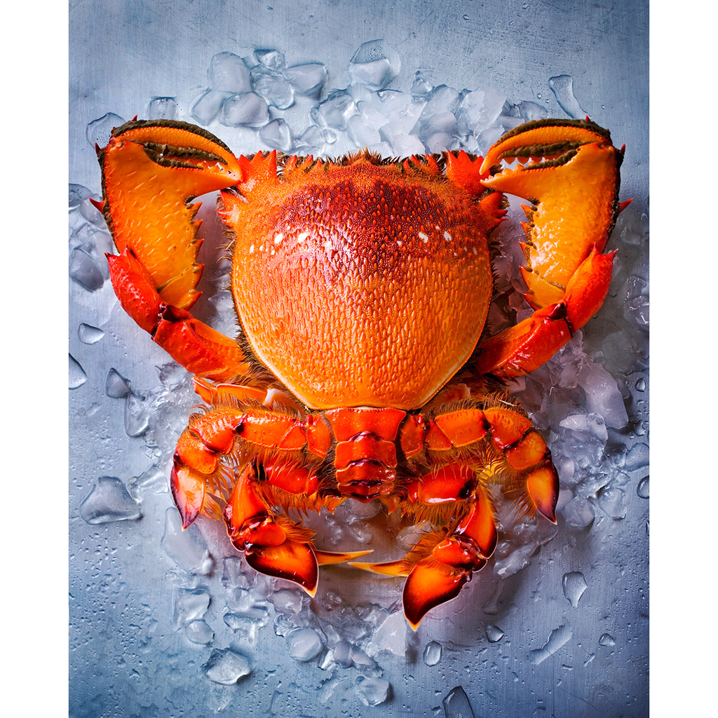 FWX FOOD PHOTO CONTEST CRAB