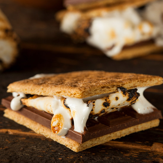 FWX GOVERNMENT SMORES TIPS