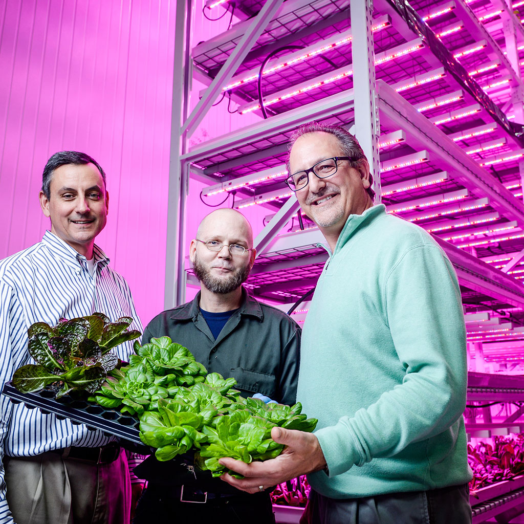 The Farm of the Future is Here, and It's Vertical