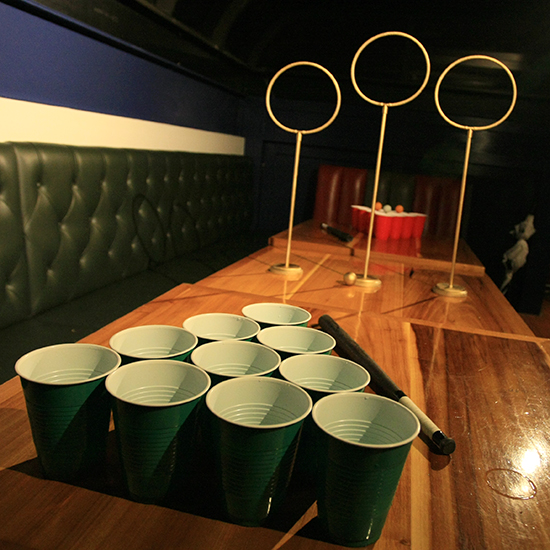 FWX KITCHEN TRASH UNOFFICIAL QUIDDITCH PONG