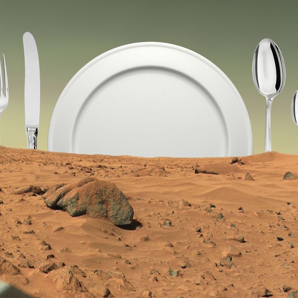 FWX MENU FOR MARS