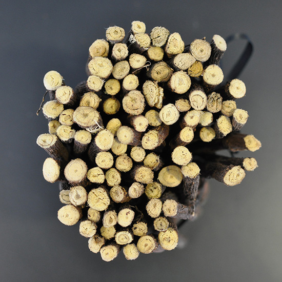 FWX NEED SUPPLY CO LICORICE LICORICE ROOT