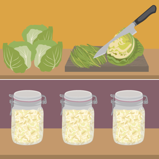 FWX PARTNER FIX FERMENTED FOODS