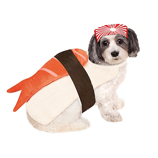 Sushi Dog  sc 1 st  Food u0026 Wine Magazine : dewback dog costume  - Germanpascual.Com