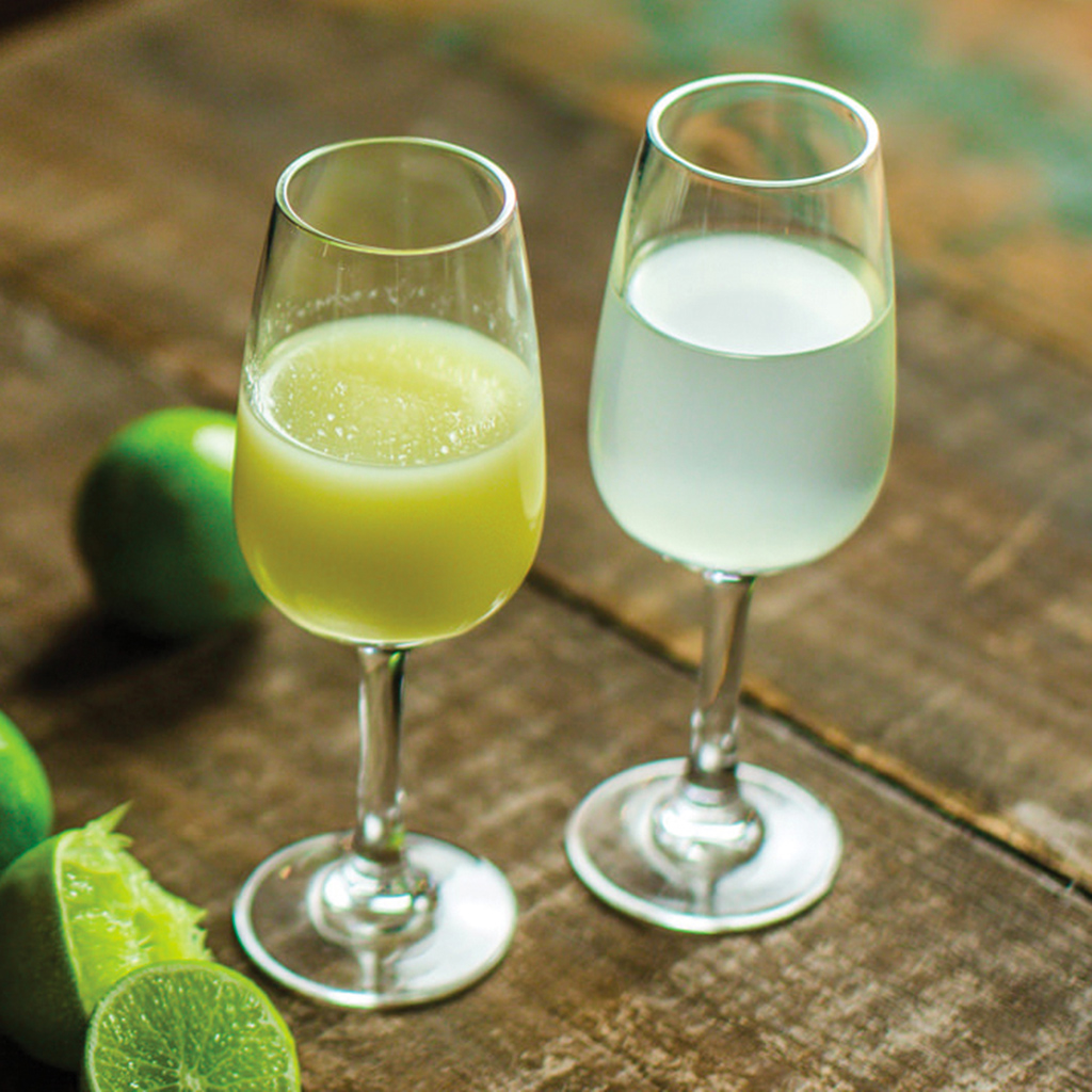 FWX PARTNER LIQUOR MUDDLE YOUR JUICE
