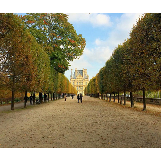 The Tuileries Gardens, Paris