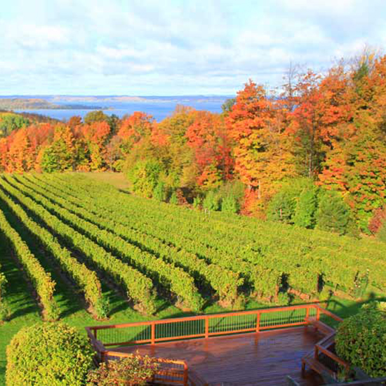 Best Cabernet Franc: Traverse City, Michigan