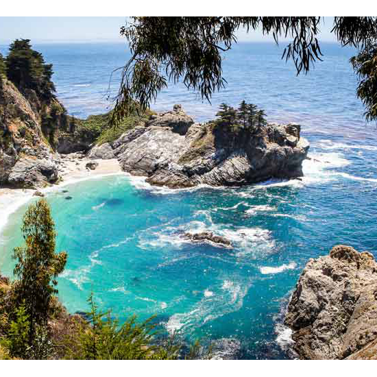 A Night of Camping on the Pacific Coast: $30
