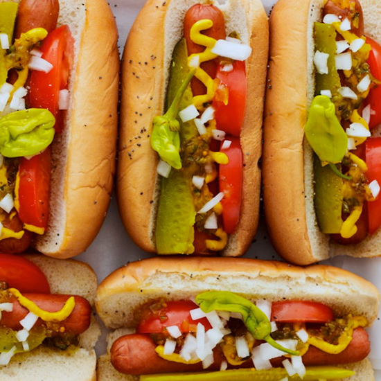 FWX PARTNER SPOON U CHICAGO DOG
