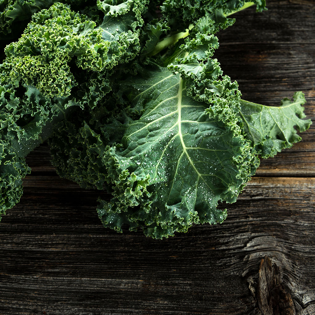 FWX REPORT ON KALE