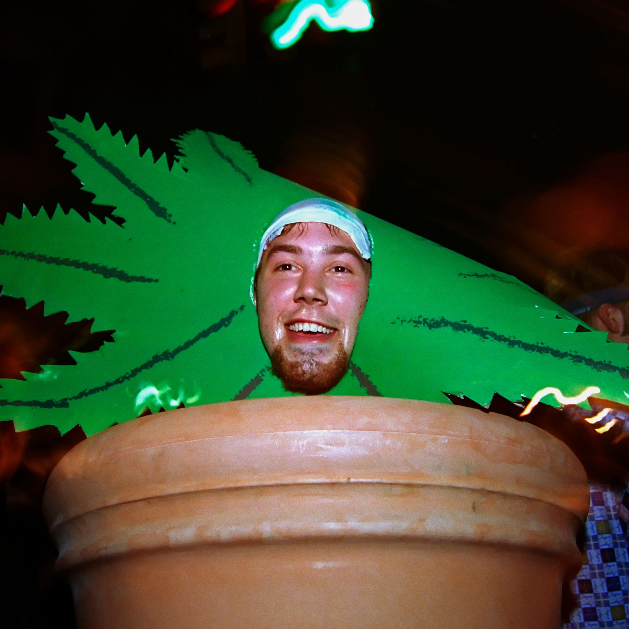 FWX TRICK OR TREATERS MARIJUANA_2