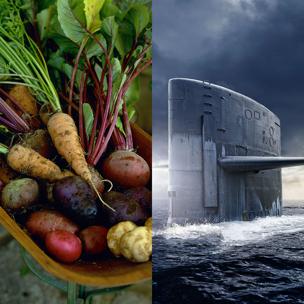 gardens-at-sea-could-come-to-submarines-fwx