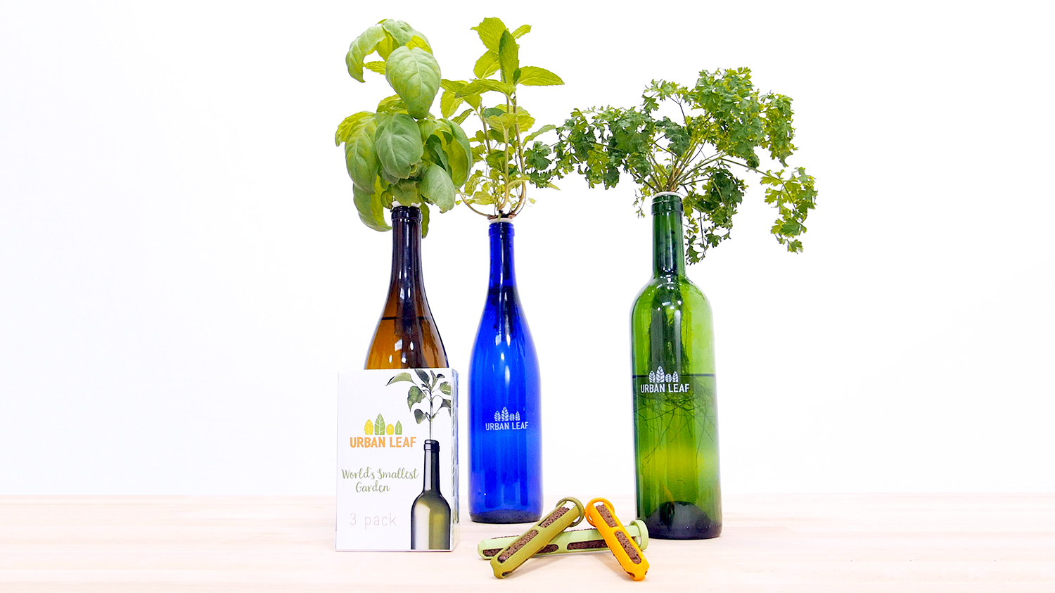 gardens in wine bottles
