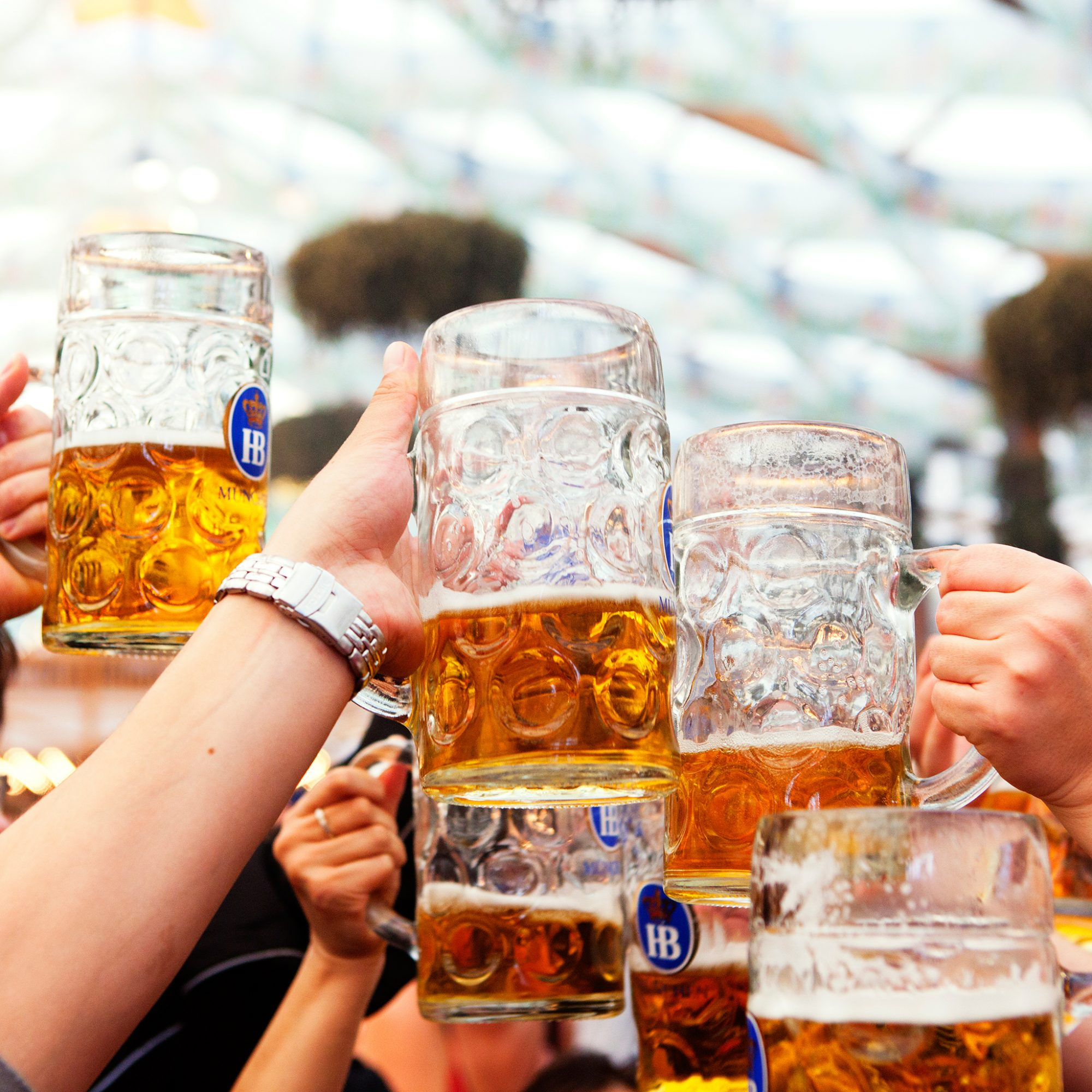 GERMAN BEER LAW FWX