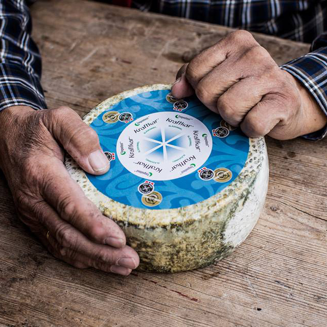 norwegian-cheese-fwx