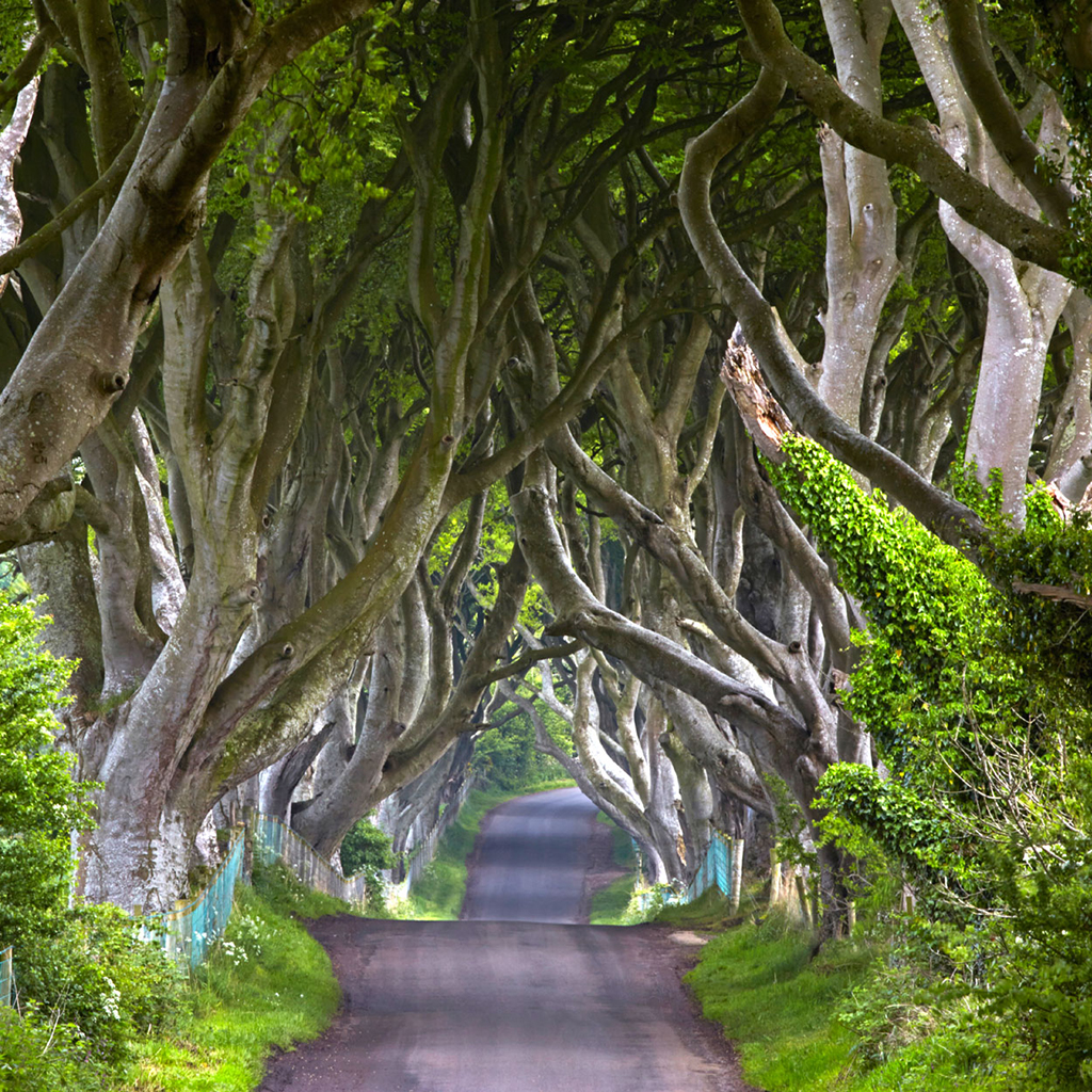 Game of Thrones: Kingsroad
