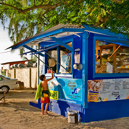 Cuz's Fish Shack, Barbados