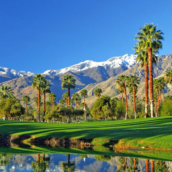 A Desert Oasis: Palm Springs, CA