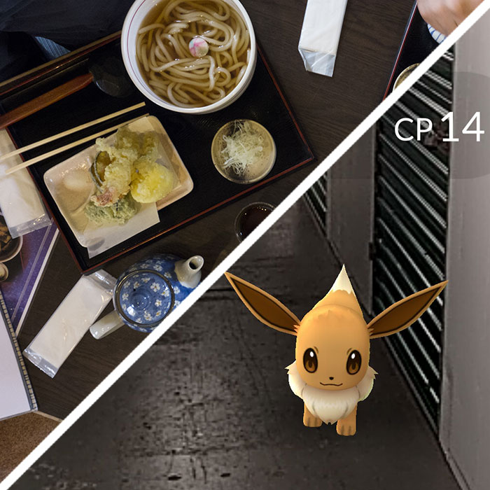 pokemon-go-food-fwx