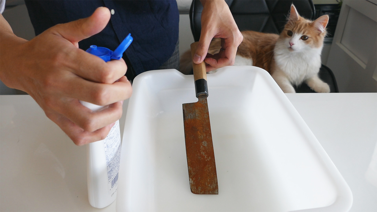 polishing a rusty knife to be good as new