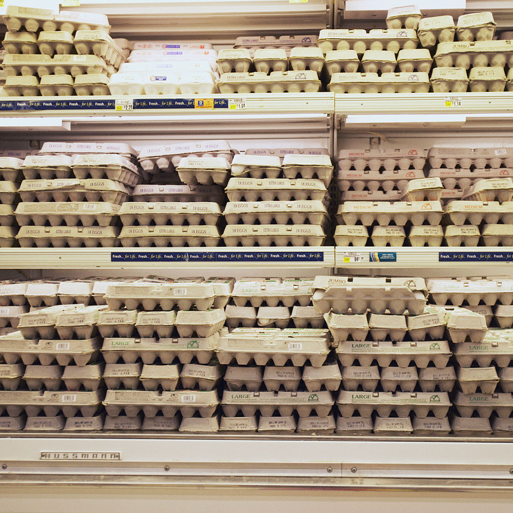 refrigerating-eggs-fwx