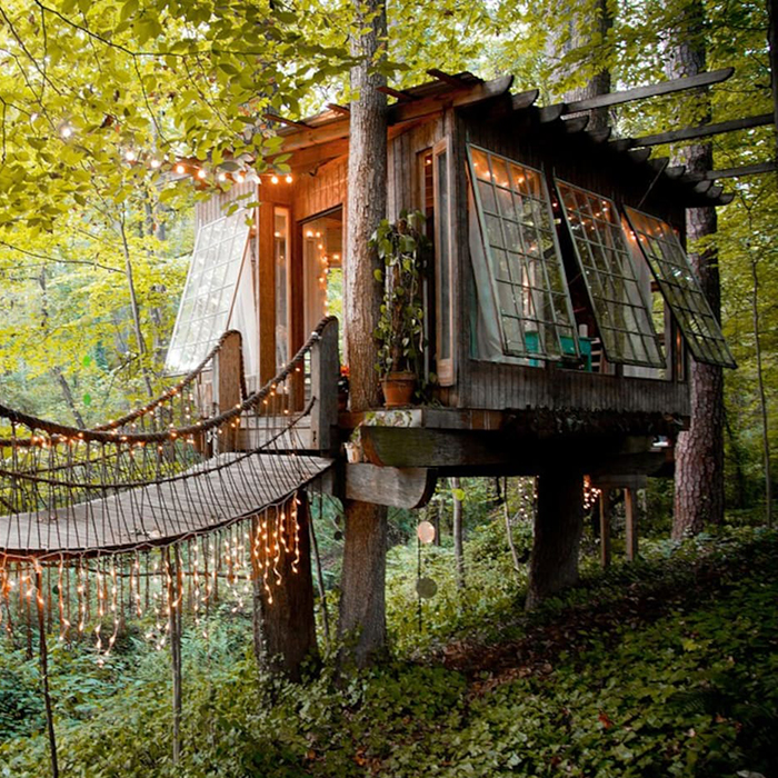 Airbnb, outdoor, rental, treehouse