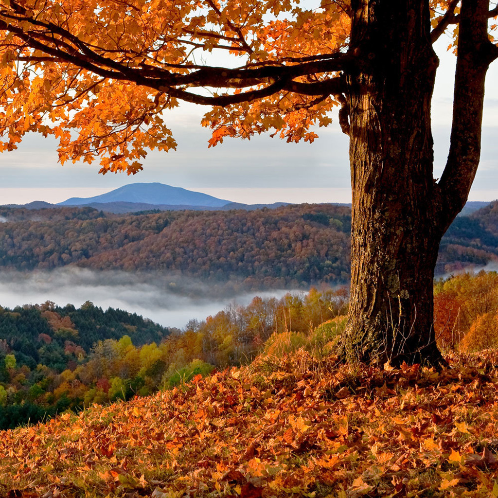 Vermont, Fall