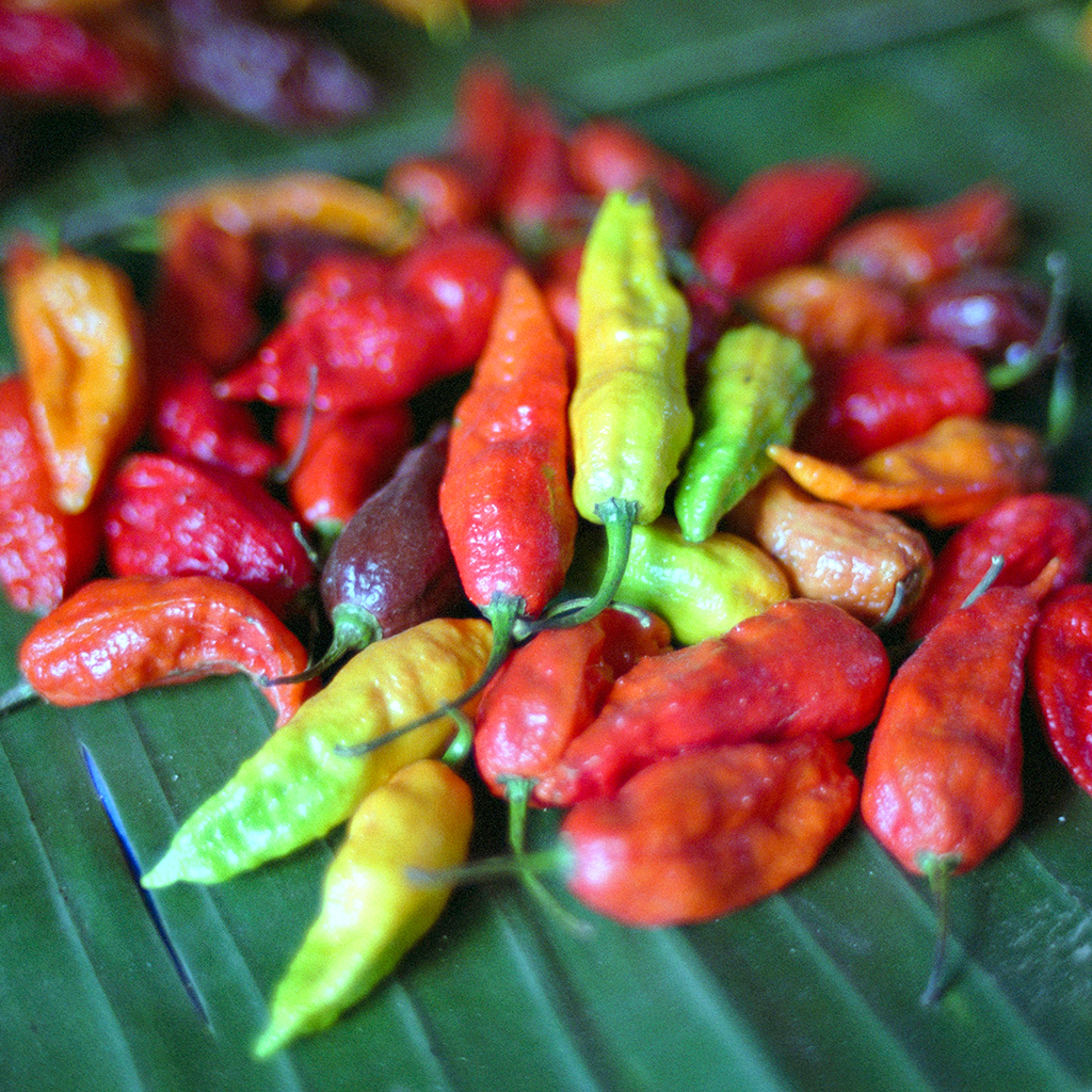 Here's Why Spicy Foods Make Your Nose Run