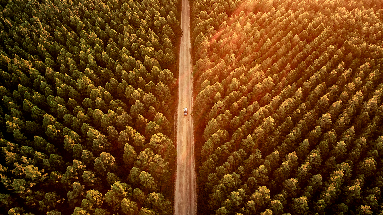 overhead view of road