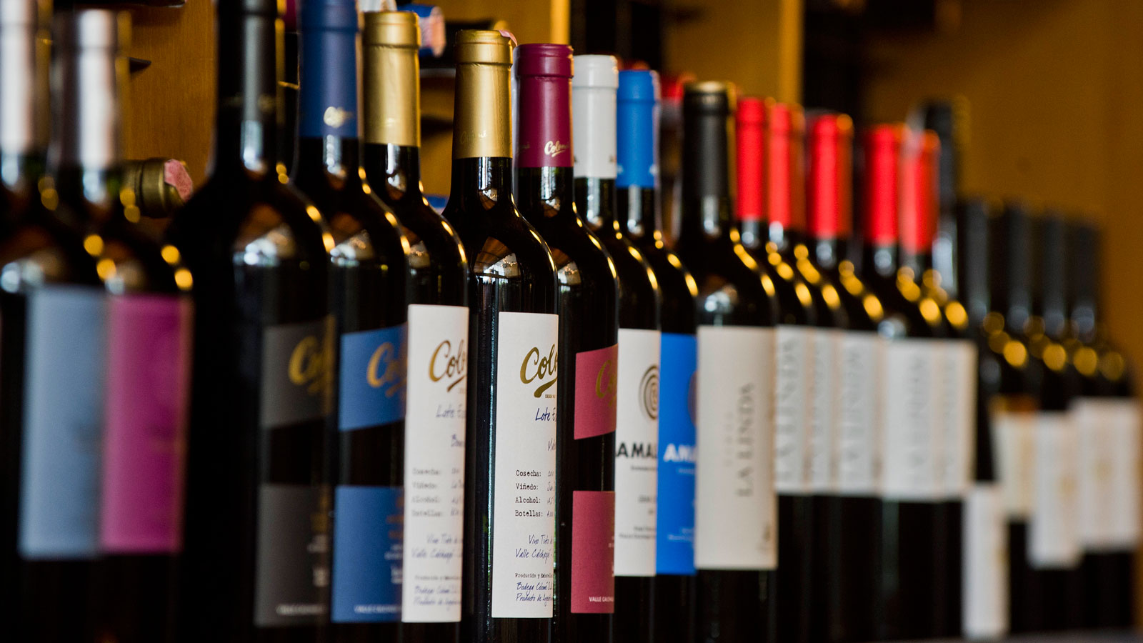 brazil-wines-store-FT-BLOG0717.jpg