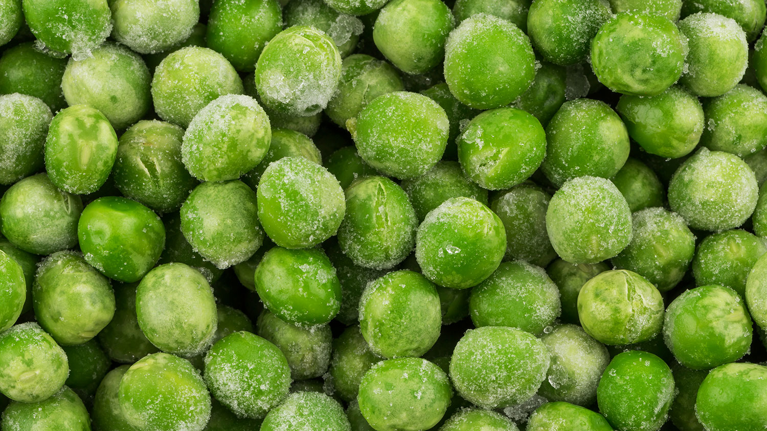 frozen food fraud in italy