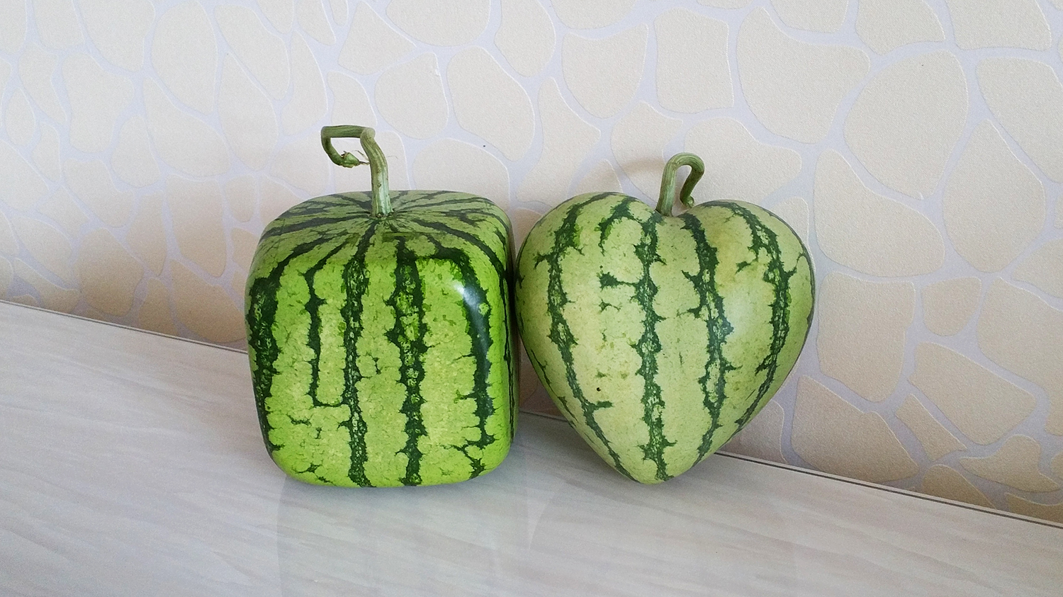 square and heart shaped watermelon moulds