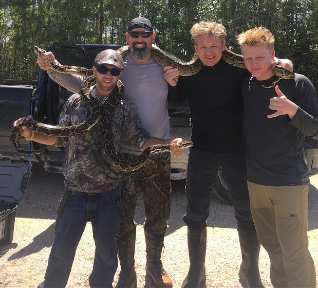 Gordon Ramsay python-hunting in Florida.