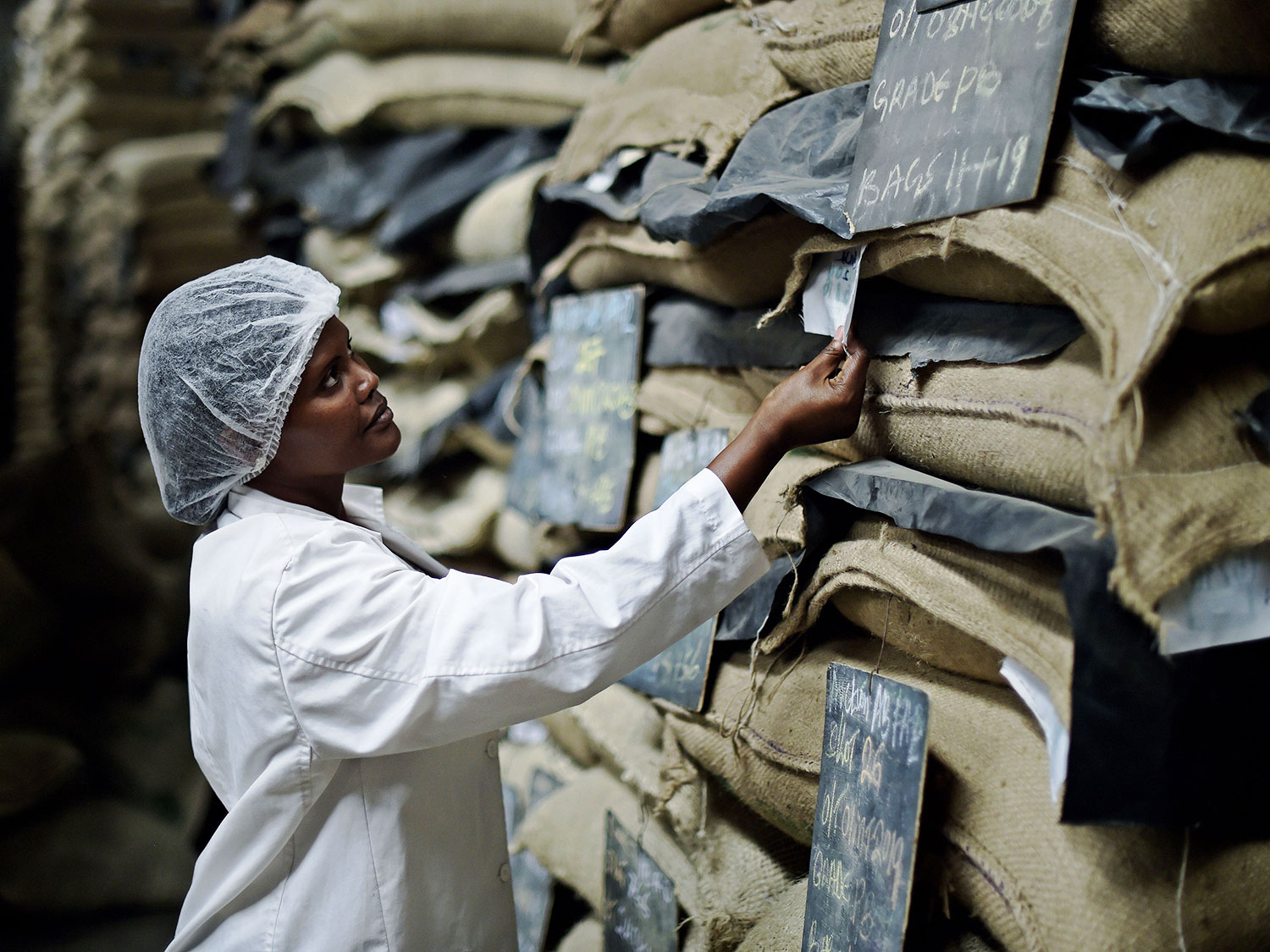 africa's economy coffee impacts