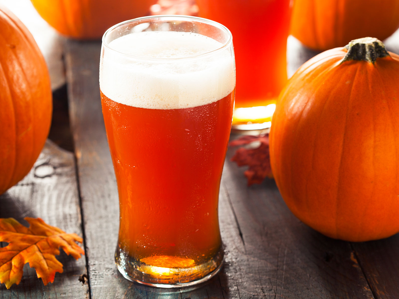 pumpkin beer coming early this year